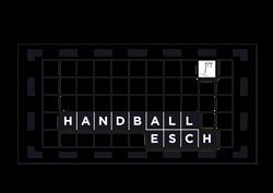 handball-esch_big_250x177